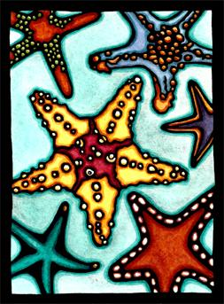 Starfish Original